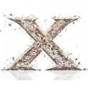 X Edition