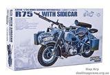 Мотоцикл с коляской BMW R75