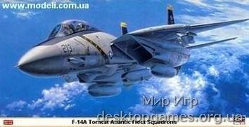 F-14A Tomcat Atlantic Fleet Squadrons