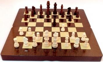 Шашки, шахматы, нарды 3 в 1 - фото 2