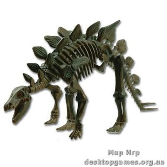 Скелет динозавра Стегозавр
