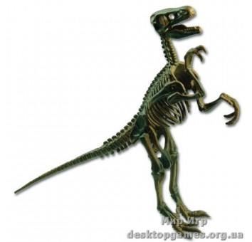 Скелет динозавра Велоцираптор