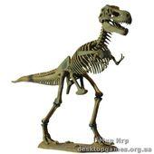 Большая модель скелета Тиранозавра