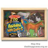 Животные на магнитах