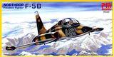 Самолет Нортроп F-5В «Фридом Файтер»/NORTHROP FREEDOM FIGHTNER