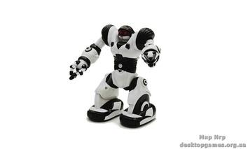 Мини-робот Робосапиен.