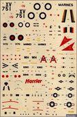 TRA72051 Harrier