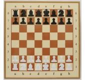 Демонстрационные шахматы 77 см