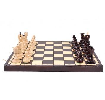 Шахматы ACE - фото 9