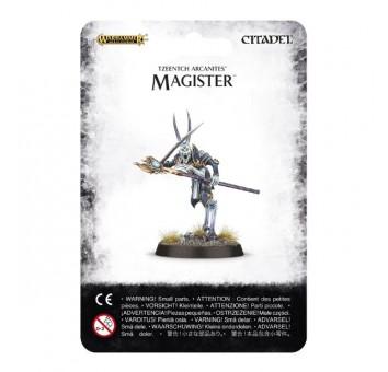 Magister - фото 5