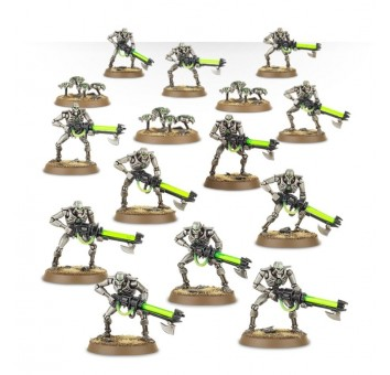 Necron Warriors with Canoptek Scarabs